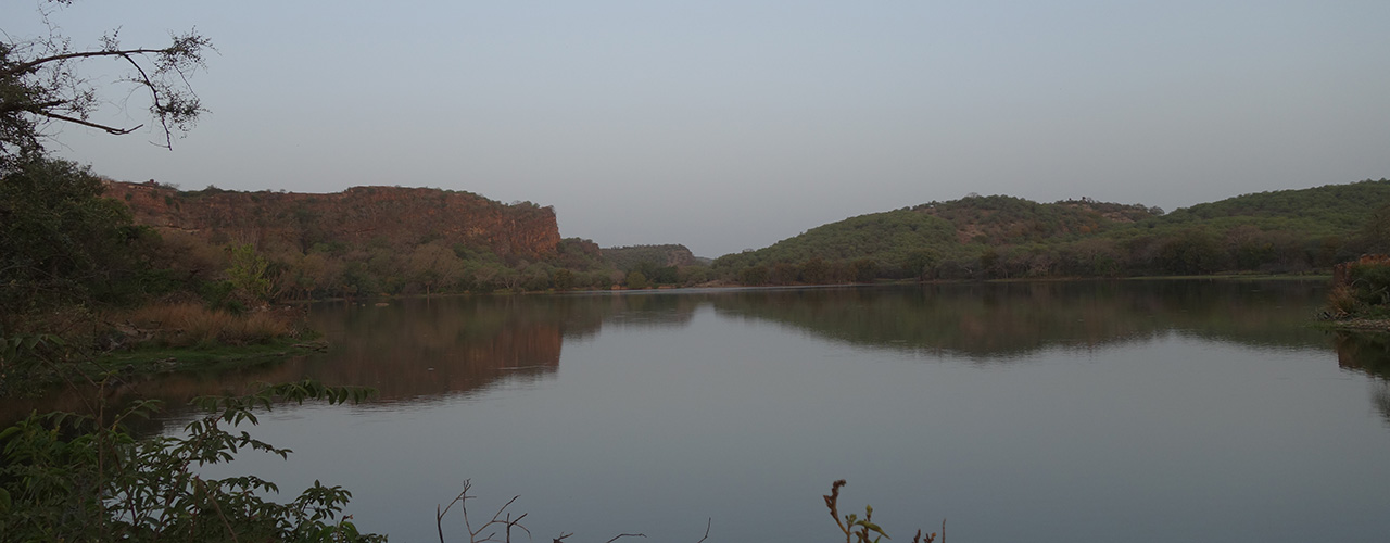Ranthambore National Park Safari - Ibex Expeditions