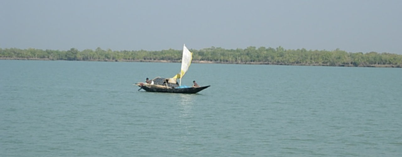 Sundarban National Park - Ibex Expeditions