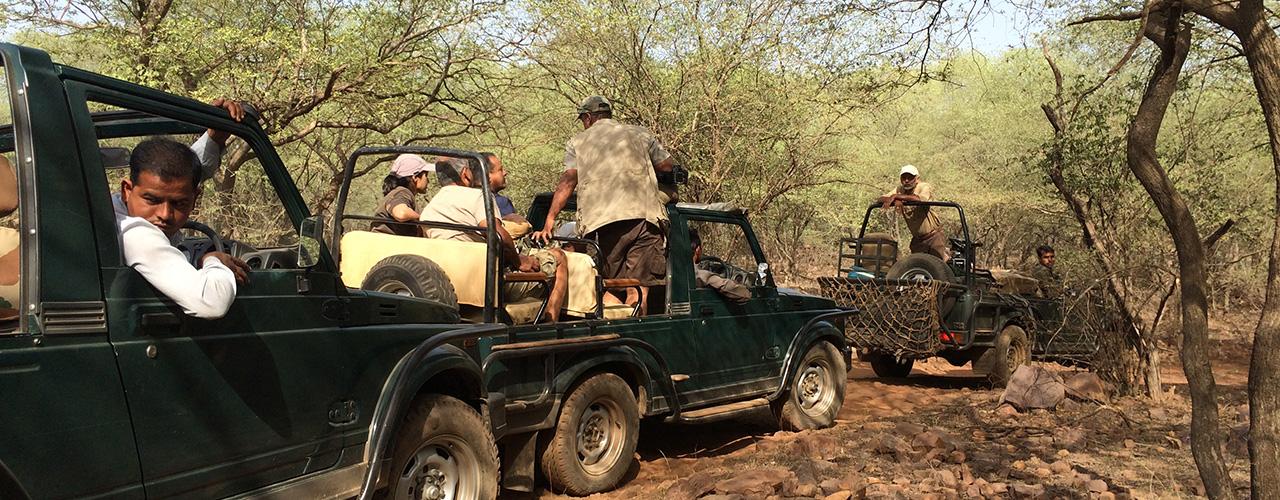 Wildlife Travel - Ibex Expeditions