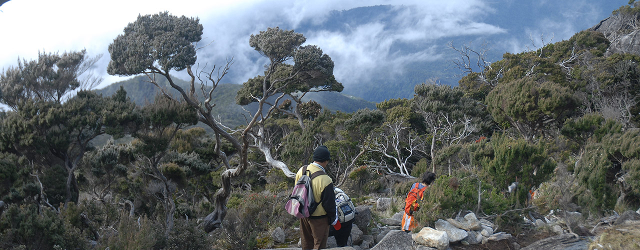 Borneo Adventure Trips - Ibex Expeditions