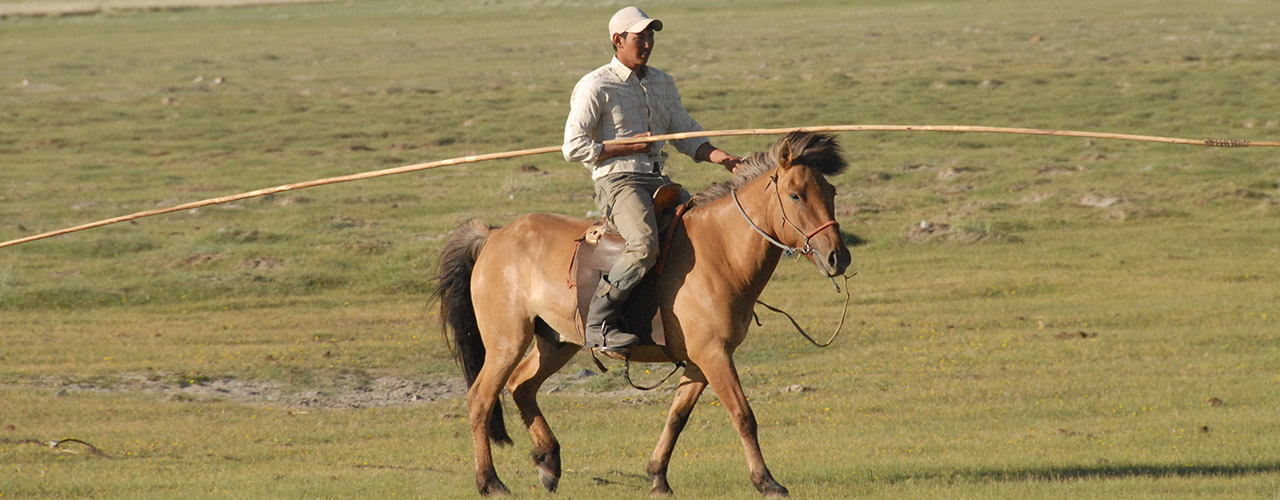Horse Trekking - Ibex Expeditions
