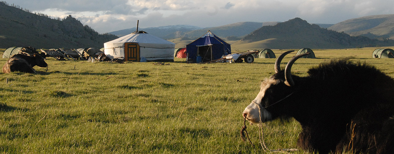 Mongolia Adventure Tours - Ibex Expeditions