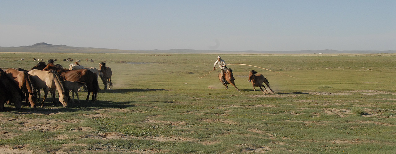 Mongolia Horse Riding - Ibex Expeditions