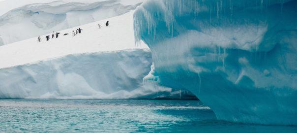 Antarctica Matters