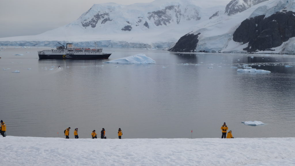 Racing To Cross Antarctica  - Ibex Expeditions