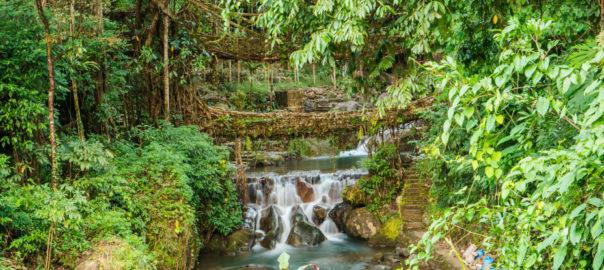 Nongriat, Meghalaya | Ibex Expeditions