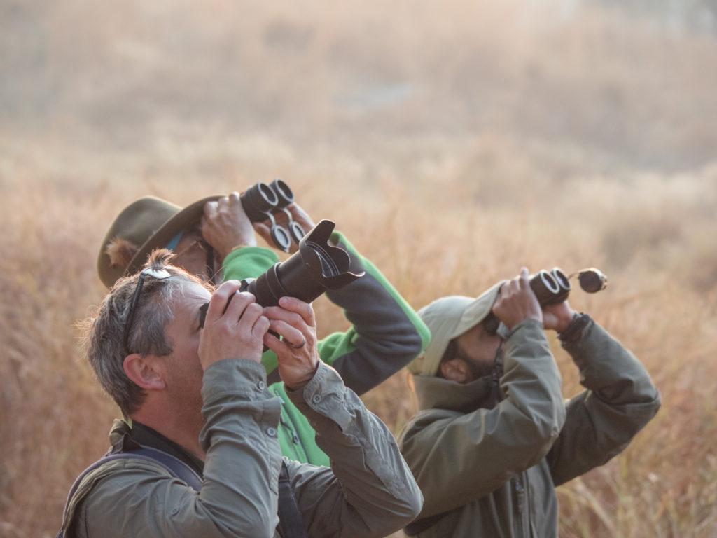 Adventure Holidays India - Ibex Expeditions