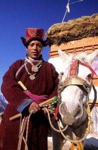 Ladakh Tour - Ibex Expeditions