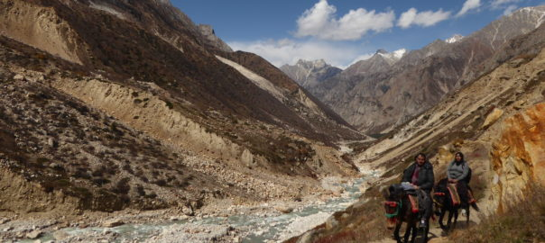 World Environment Day 2019 – Beat Air Pollution   Ibex Expeditions