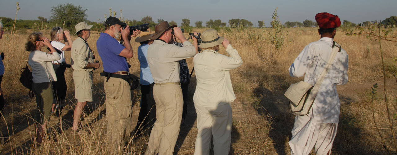 Bird Watching Tours India | Ibex Expeditions